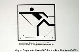 Cross-country Skiing Pictogram