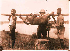 A missionary standing behind two African Men holding a dead boer.