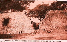 Shaded by Ancient Trees, Northwester entrance to the Temple at Zimbabwe.