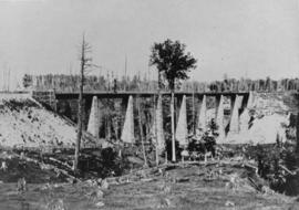 Grand Trunk Railway bridge, Georgetown