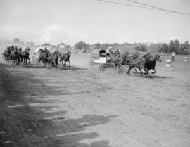 Chuck wagon race, Red Deer