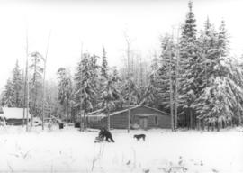 George Family Cabin in the pines west of Wembley, Alberta.