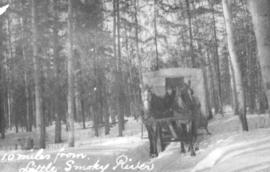 Horse and Caboose Sleigh on the Edson Trail