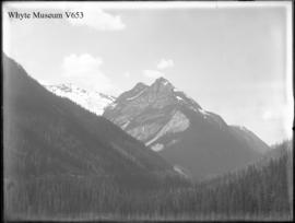 From shed no.19, just above Glacier House, Mts. Abbott to Cheops (No.23). 8/2/99