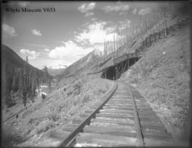 Shed 29, avalanche deflectors, Mt. Cougar and Loop Valley (No.29). 8/3/99