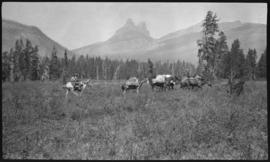 Barnes family with pack train on trip to Kootenay Plains, Molar Mountain in background