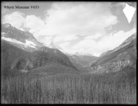 Yoho Valley from R.R., panorama no. 2 (No.16). 7/30/01