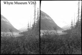 Icefield trip, Mt. Columbia, stereo