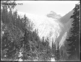 Great Glacier from elbow on trail to top of Cascades, Glacier House, Glacier trip 1898 (No.83). 8...