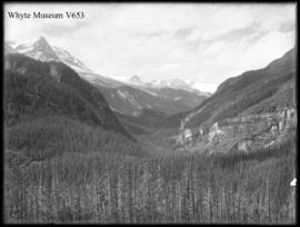 Yoho Valley and Mount Habel from R.R. (No.14). 7/30/01