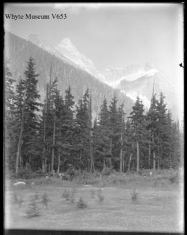 Untitled : [Mount Sir Donald]